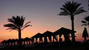 Zona hermosa del salón en la playa de Chipre con las palmeras y las tiendas en el fondo pintoresco de la puesta del sol Revestimi metrajes