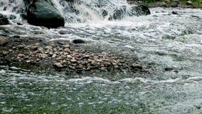 Zona mescolantesi di scarico di acque luride di acque luride urbane Inquinamento del fiume Scarichi della citt? Torrente montano  stock footage