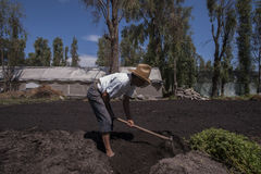 Zona rural em Cidade do México fotos de stock royalty free