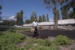 Zona rural em Cidade do México fotografia de stock royalty free