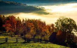Zona rurale sulla mattina nebbiosa di autunno Fotografia Stock