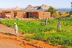 Zona rurale vicino al lago Nasser nell'Egitto del sud Fotografie Stock Libere da Diritti