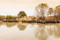 zona umida di Hangzhou xixi di paesaggio di autunno immagini stock libere da diritti