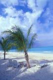 Zonas tropicales 04 de Bahamas Imágenes de archivo libres de regalías