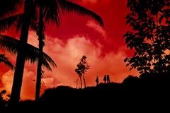 Zonas tropicales rojas Fotos de archivo libres de regalías