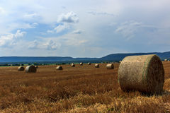 Zone agricole colorée Photo stock