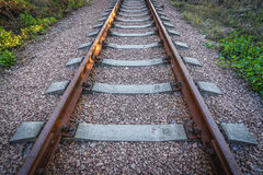Zone of Alienation. Railroad tracks in Chernobyl Exclusion Zone, Ukraine Stock Images
