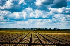 Zone arable photographie stock libre de droits