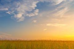 Zone au coucher du soleil Images libres de droits