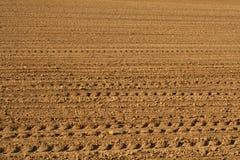 Zone au printemps Photos libres de droits
