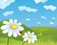 Zone d'été Image libre de droits