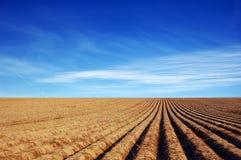 Zone d'agriculture image libre de droits