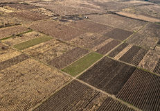 Zone d'agriculture Photo stock