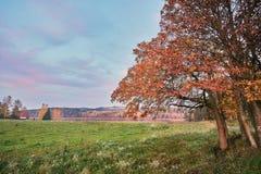 Zone d'automne photographie stock libre de droits