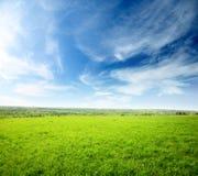 Zone d'herbe Photographie stock libre de droits
