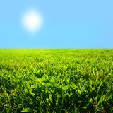 Zone d'herbe de ciel Images libres de droits