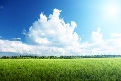 Zone d'herbe et de ciel parfait photos stock