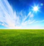 Zone d'herbe verte et ciel bleu lumineux Photographie stock libre de droits