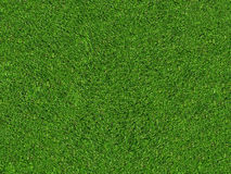Zone d'herbe verte normale images stock