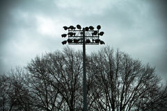 Zone de base-ball Photo stock