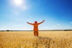 Zone de blé Image libre de droits