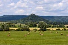 Zone de blé. Photo libre de droits