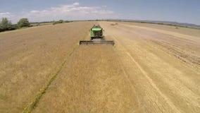 Zone de blé Saison de récolte de blé clips vidéos