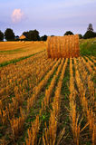 Zone de ferme au crépuscule Photographie stock libre de droits