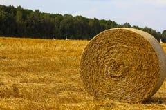 Zone de ferme avec des balles de foin Photo libre de droits