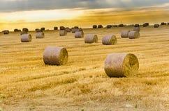 Zone de ferme avec des balles de foin Photographie stock libre de droits