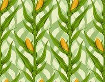 Zone de maïs illustration libre de droits