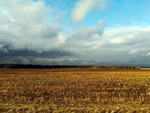 Zone de maïs après moisson photographie stock