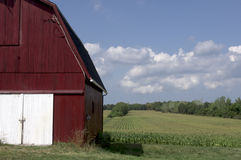 Zone de maïs rouge de grange Image libre de droits