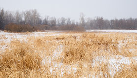 Zone de neige Photo stock