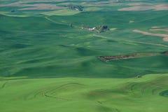 Zone de Rolling Hills et de blé photographie stock