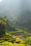 Zone de terrasse Image stock