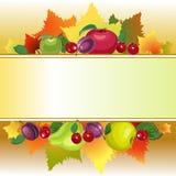 Zone de texte de fruit Photos stock