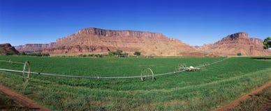Zone des collectes avec le système d'irrigation photos libres de droits