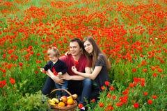 Zone des fleurs photo stock