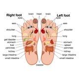 Zone di reflessologia dei piedi illustrazione vettoriale
