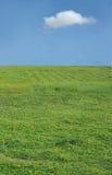 Zone et ciel photos libres de droits