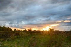 Zone et coucher du soleil verts Photographie stock