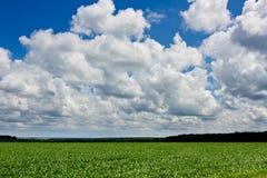 Zone et nuages image libre de droits