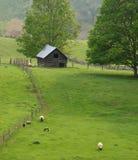 Zone et prés en Virginie rurale image stock