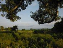 Zone frontalière entre la jungle et les prairies, parc national de Chitwan Image stock