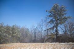 Zone gelée Photographie stock