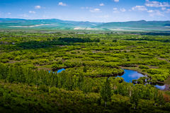 Zone humide de l'Inner Mongolia images stock