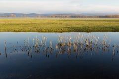 Zone inondable - vallée d'Ipoly Image libre de droits