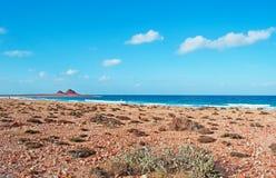 Zone protégée de marine de Dihamri, la plage, coraux, coquilles, montagnes rouges, plongeant en île d'île de Socotra, le Yémen Photographie stock