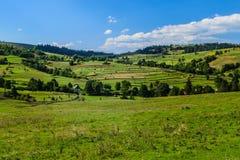 Zone rurale dans carpathien image libre de droits